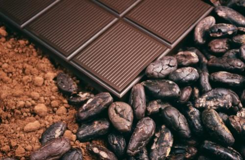 Cacao-Alena-Brozova1200.jpg